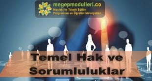 temel hak ve sorumluluklar