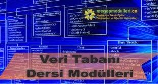 veri tabani dersi modulleri